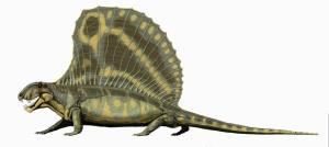 Dimetrodon_gigashomogenes
